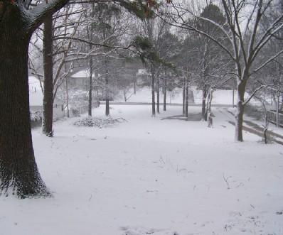 snowy-yard.jpg