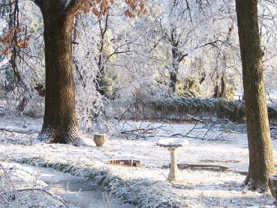 icy-yard